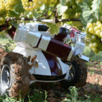 ROBOTS TO REPLACE FARM WORKERS BY 2050