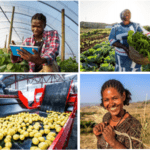 Apply for Mastercard Foundation Fund for Rural Prosperity